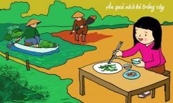 Góc chia sẻ: Ý nghĩa của tục ngữ ăn quả nhớ kẻ trồng cây