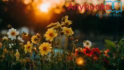 Những bài Vè về loài hoa hay nhất