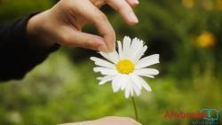 8 cuốn sách về sự tĩnh tâm giúp bạn sống cuộc đời bình yên, tự do
