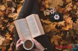 Top 5 cuốn sách hay về sức mạnh của ngôn từ giúp bạn cải thiện kỹ năng giao tiếp