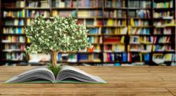 Top những cuốn sách hay giúp bạn cân bằng cuộc sống