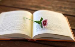 Những cuốn sách nghệ thuật sống hay nhất mọi thời đại nên đọc